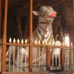 சித்தூர் தென்கரை மகாராஜாவும், நெல்லையப்பரும்