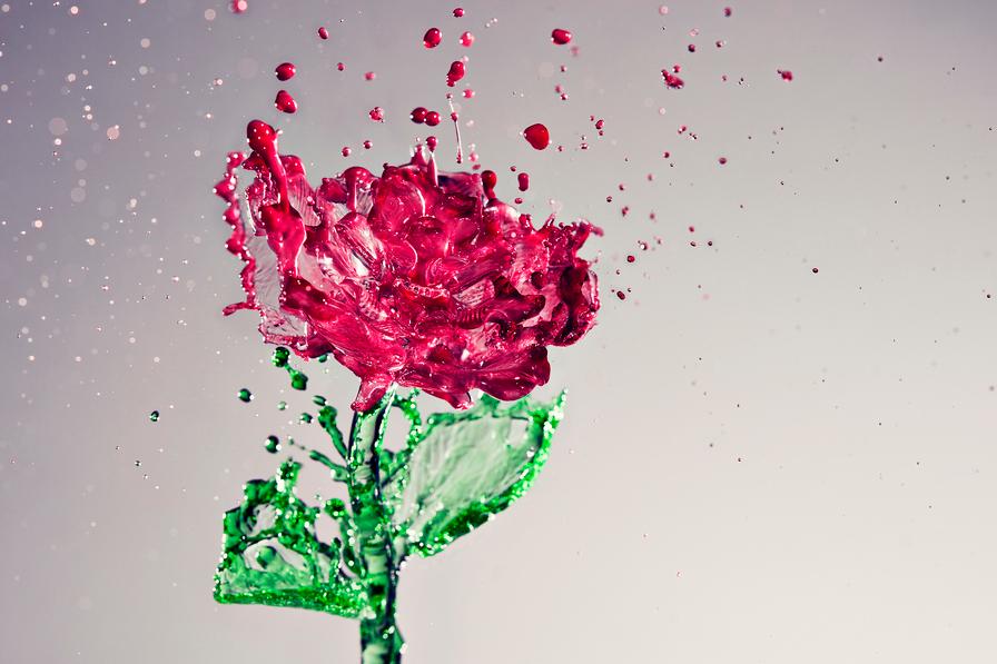 red-flower_sempoo_artwork_water_colors_stem_green