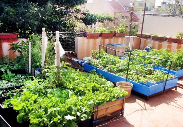 - Lay outs garden terrace ...