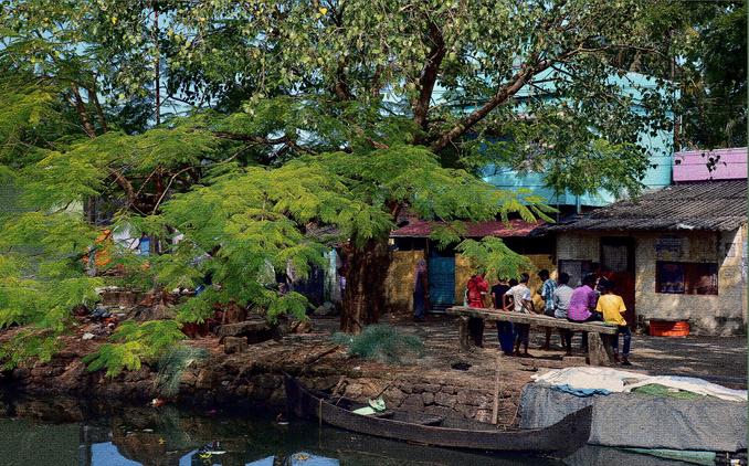 India_Trees_Kids_Village_Rural_Suburban_Water_Children_Bench