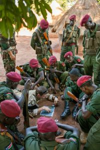 African_Union_US_Special_Forces_Military_Army_Training_Exercises_Peace_Navy_Seals