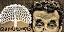 பொலான்யோ: 225